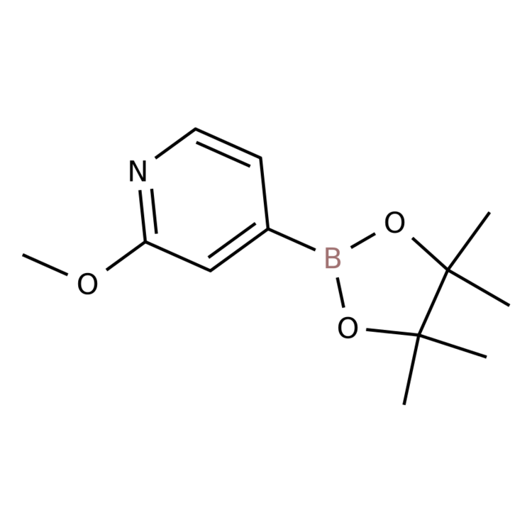 2-Methoxy-4-(tetramethyl-1,3,2-dioxaborolan-2-yl)pyridine