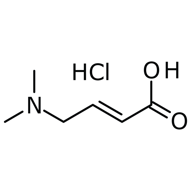 (2E)-4-(dimethylamino)but-2-enoic acid hydrochloride