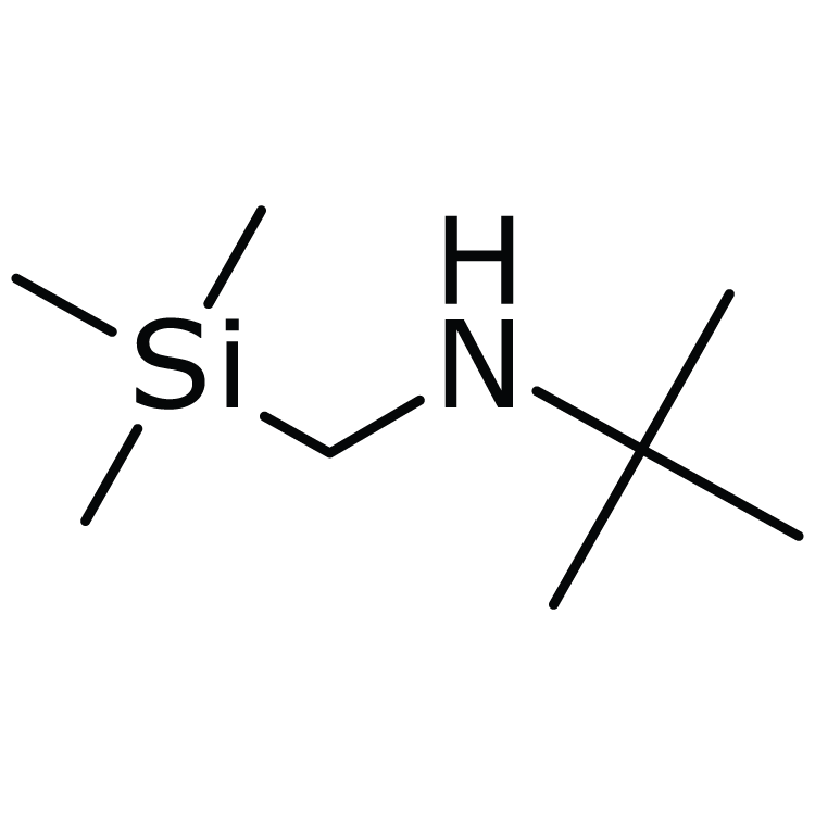 2-Methyl-N-[(trimethylsilyl)methyl]-2-propanamine
